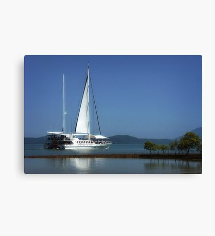 Reef Cruiser - Port Douglas Canvas Print