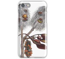 Seedpods iPhone Case/Skin