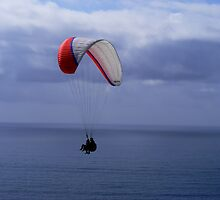 My Grandson Paragliding ~ La Jolla, California ~ USA by Marie Sharp