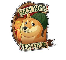 Such Bomb Very Explode Photographic Print