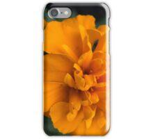 Spring Flower Series 61 iPhone Case/Skin