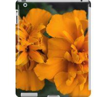 Spring Flower Series 61 iPad Case/Skin