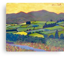 East Kilkenny, Ireland Metal Print