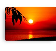 Dawn in the South second series Canvas Print