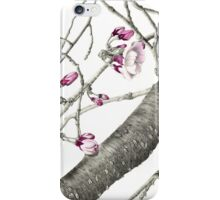 April Blossoms iPhone Case/Skin