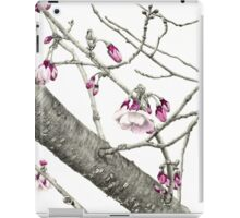 April Blossoms iPad Case/Skin