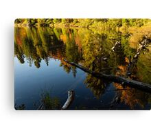 Mesmerizing Fall Reflections Canvas Print