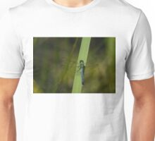 Pond Jewel - Blue and Green Dragonfly Unisex T-Shirt