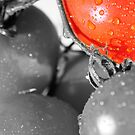 Tomato Color Splash by ANDIBLAIR