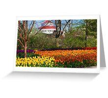 2016 Blooms 3 Greeting Card