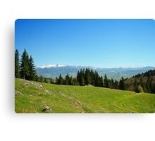 spring mount 2 Canvas Print