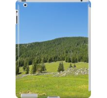 Spring mount 4 iPad Case/Skin