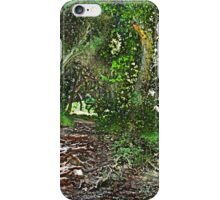 Walnut Creek Park iPhone Case/Skin
