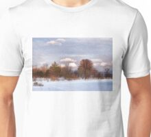 Colorful Winter Day on the Lake Unisex T-Shirt