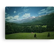 Spring mount 6 Canvas Print