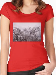 Niagara's Artistic Hand - Sparkling Frozen Tree  Women's Fitted Scoop T-Shirt