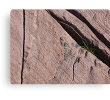 Rock of Ages 2 Canvas Print