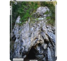 Spring mount 13 iPad Case/Skin