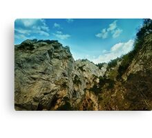 Spring mount 14 Canvas Print