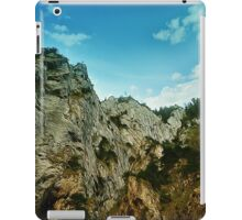 Spring mount 14 iPad Case/Skin