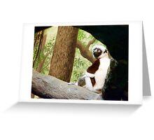 2016 Animals Greeting Card