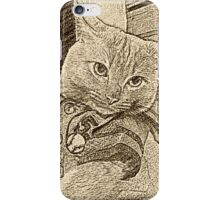 Baseball Cat iPhone Case/Skin