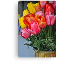 Colorful spring tulips  Canvas Print