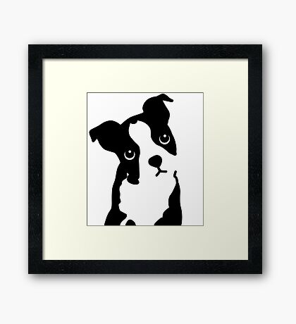 Cute Boston Terrier Design Framed Print