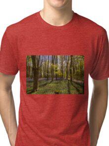 Kings Wood Bluebells Tri-blend T-Shirt