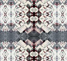 Kaleidoscope Pattern by Aaran Bosansko