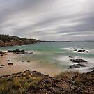Spiky Beach, Swansea, Tasmania #3 by Chris Cobern
