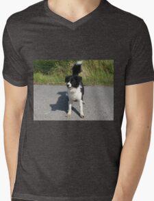 Collie Dog - Cute K9 T-Shirt
