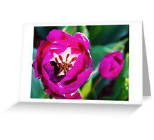 2016 Blooms 6 Greeting Card