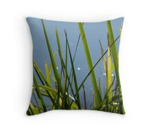 Reeds: Maribyrnong River Throw Pillow