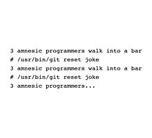 3 amnesic programmers walk into a bar Photographic Print