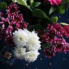 Flowers - Dark and Fair by kathrynsgallery