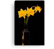Daffodils 2 Canvas Print