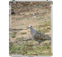 Native Flock Bronzewing Pigeon! Through Glass, 'Arilka' iPad Case/Skin
