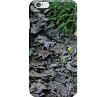 Brown Leaves and Yellow Daffodils iPhone Case/Skin