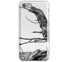 The Old Tree iPhone Case/Skin
