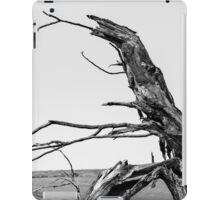 The Old Tree iPad Case/Skin