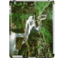 Washington Stream 1008-10 iPad Case/Skin