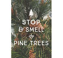 STOP & SMELL THE PINE TREES Photographic Print