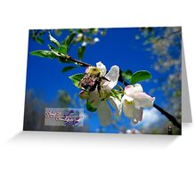 blue skies and a bee 2 Greeting Card