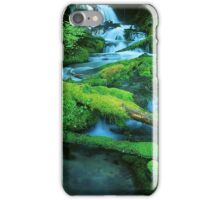 Washington Creek and Falls iPhone Case/Skin