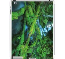 Washington Creek and Falls iPad Case/Skin