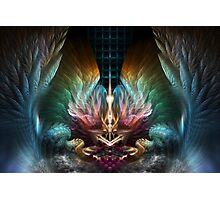 The Wings Of Artillian Photographic Print