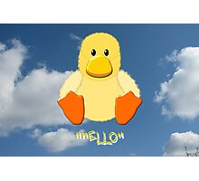 A Baby Duck Hello Photographic Print