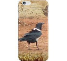 Domino, the Pied Crow iPhone Case/Skin