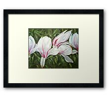 Magnolia III Framed Print